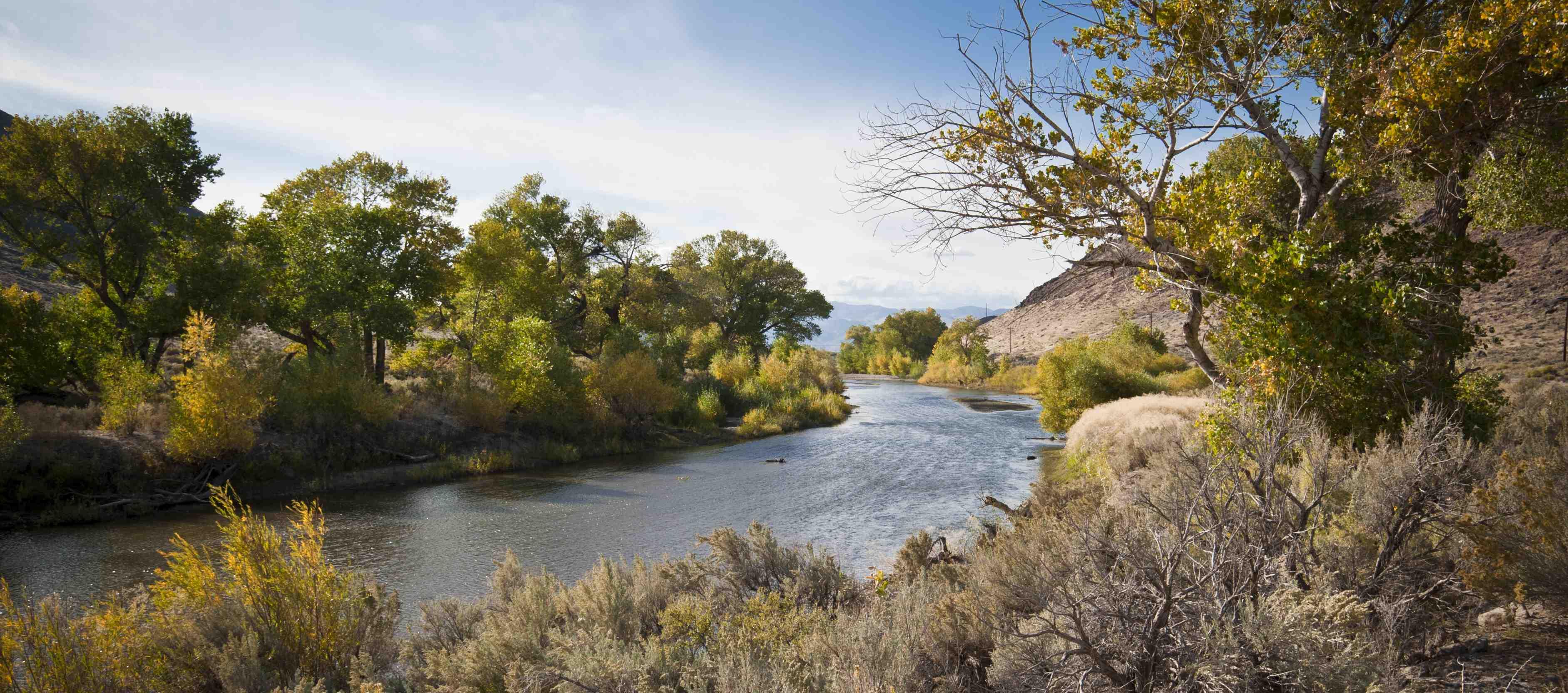 Carson-RiveriStock_pre-shrink